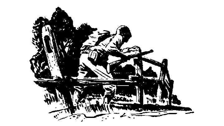 pic 4